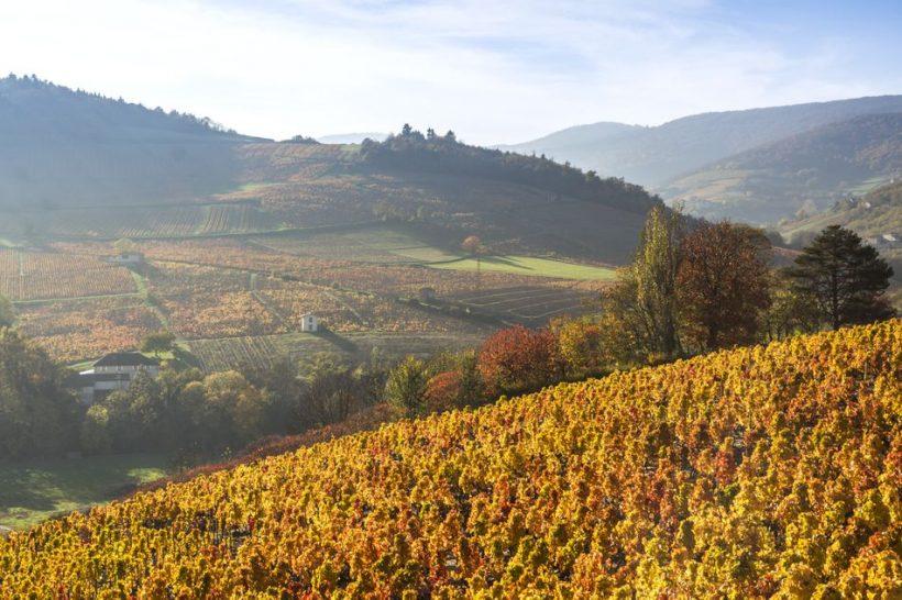 Октомври в Франция: Времето, Какво да се опаковат и Какво да се види