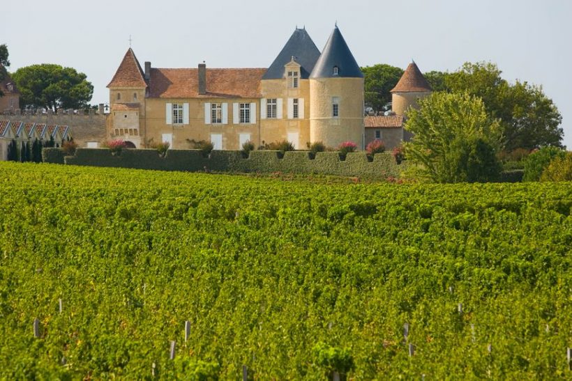 Wine Tourism i og rundt Bordeaux