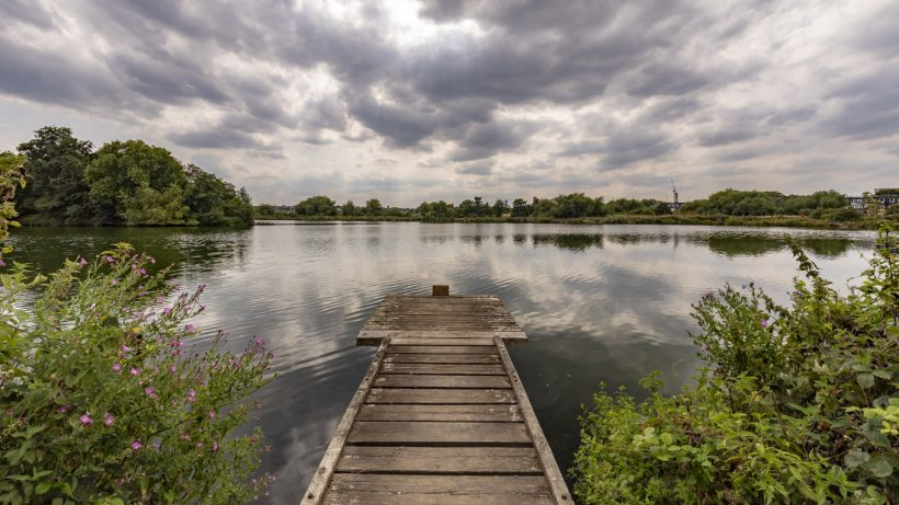 Walthamstow Wetlands: The Complete Guide