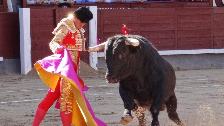 Spania Ghid turistic: luptele cu tauri în Spania