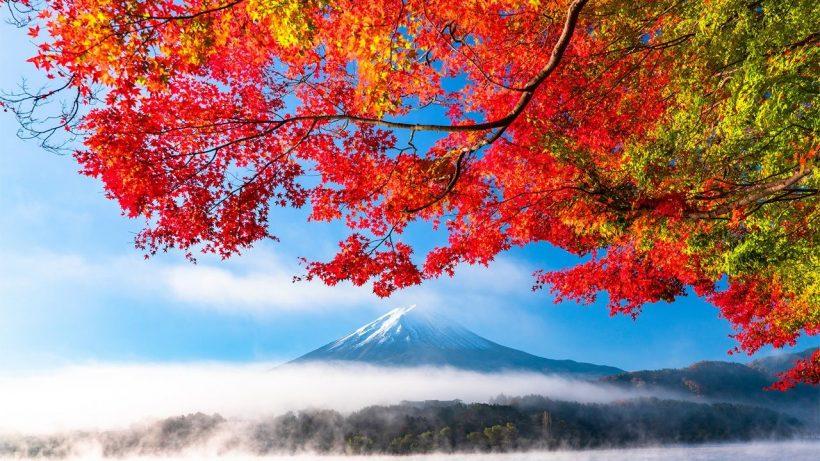 Automne au Japon: Météo, Que Pack, et quoi voir