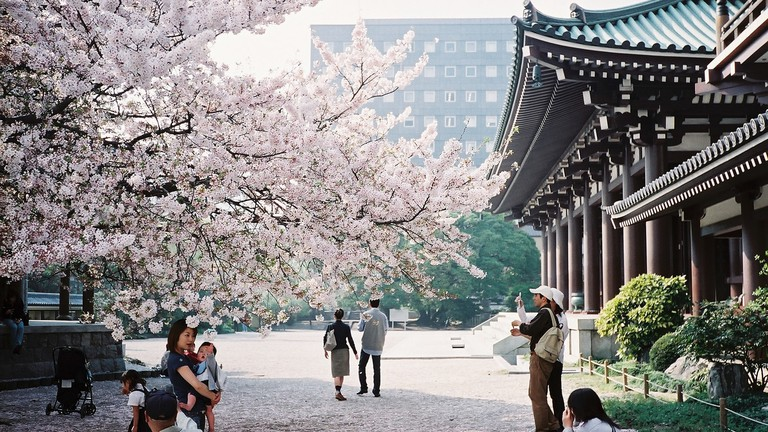 Japonya'da Budget Travel Ultimate Guide