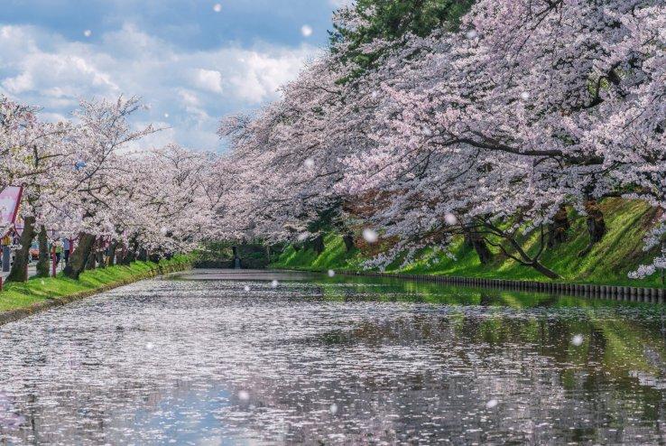 Vejret og klimaet i Japan