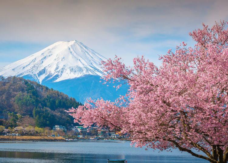 Токио Travel: Най-добър еднодневни екскурзии от Токио