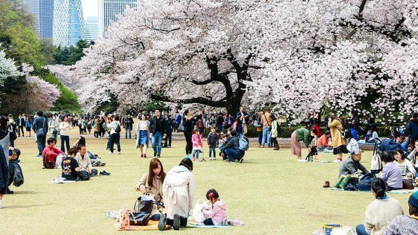 Ziyaret yılında Tokyo En güzel Parklar