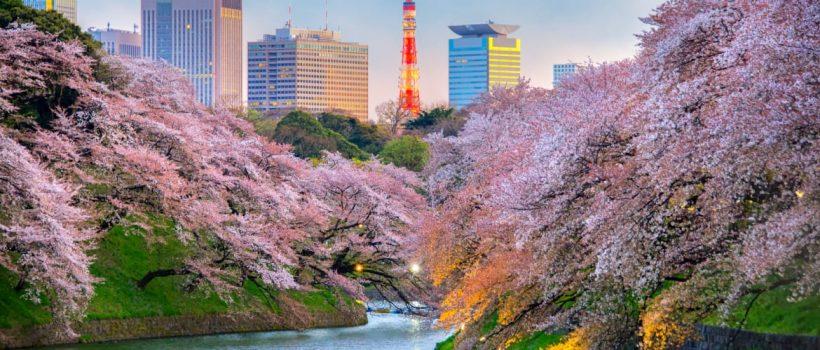 Quando é a melhor época para visitar Tokyo?